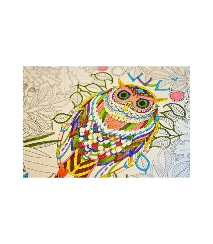 Secret Garden Colouring Book Sy Online Venture